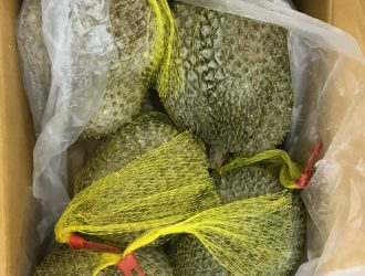 FROZEN DURIAN WHOLE