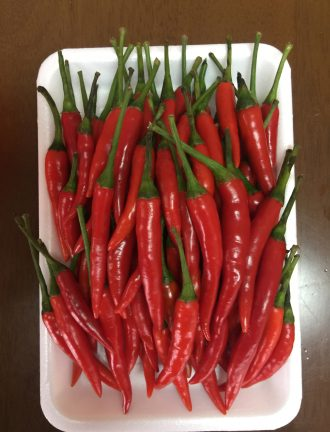 RED CHILLI (WITH STEM / WITHOUT STEM)